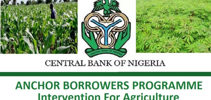 Oyo State to fund Anchor Borrowers' Programme with N2bn Credit