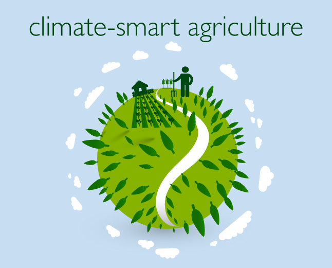 Climate-smart Culture required to adapt Agricultural Production to Changing Climate Conditions – Dr. Angela Eni