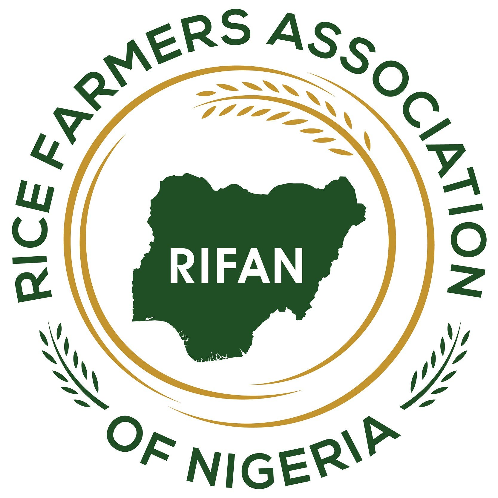 Lagos State Can Grow Rice All Year Round, says RIFAN Deputy President