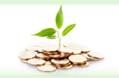 Understanding Grant Funding- Lessons for Non-Profit Organizations (NPOs)